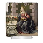 Virgin Mary, From The Annunciation Shower Curtain