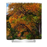 Virgin River Triptych Right Panel Shower Curtain