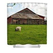 Virginia Farmyard Shower Curtain
