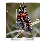 Virginia Lady Butterfly Side View Shower Curtain