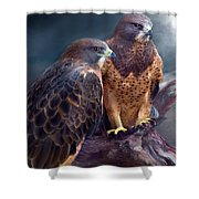 Vision Of The Hawk Shower Curtain