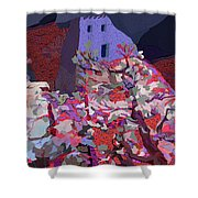 Vision Of The Ruins Shower Curtain