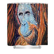 Visit To The Zoo Shower Curtain