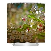 Visiting Spring Shower Curtain