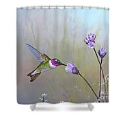 Visiting The Purple Garden Shower Curtain