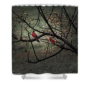 Visitors  Shower Curtain by Kim Loftis