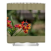 Visor Wearing Bee Pollinates A Colorful Flower Shower Curtain