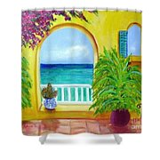 Vista Del Agua Shower Curtain