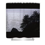 Vista - Julia Pfeiffer Burns State Park Shower Curtain