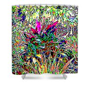 Viva Shower Curtain by Eikoni Images