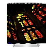 Vivacious Stained Glass Windows Shower Curtain