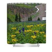 Vivid Colors Of The Colorado Alpine Shower Curtain
