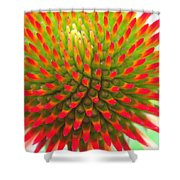 Vivid Shower Curtain