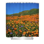 Vivid Memories Of The Walker Canyon Superbloom Shower Curtain