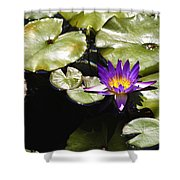 Vivid Purple Water Lilly Shower Curtain