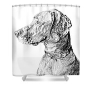 Vizlsa Dog Shower Curtain