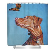 Vizsla And The Butterfly Shower Curtain
