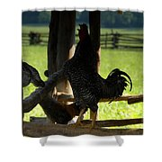 Voice Of The Farm Shower Curtain