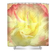 Voice Of The Heart A Rose Portrait Shower Curtain