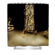 Void Maidens Of Amenta Shower Curtain