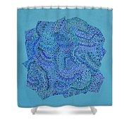 Voilet Spiral Shower Curtain