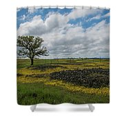 Volcanic Blooms Shower Curtain