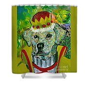 Vom Schloss Altenau Shower Curtain