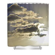 Vuelo Al Sol Shower Curtain