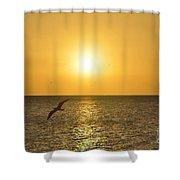 Vuelo De Amanecer Shower Curtain