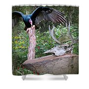 vulture with Skull Shower Curtain