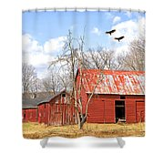 Vultures Over Barn Shower Curtain