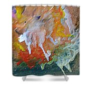 W 025 Shower Curtain