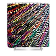W 035 Shower Curtain