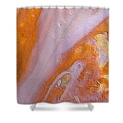 W 038 Shower Curtain