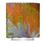 W 050 Shower Curtain