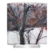 Waching Over Me  Shower Curtain by Kim Loftis
