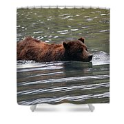 Wading Brown Bear Shower Curtain