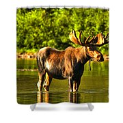 Wading For Breakfast Shower Curtain