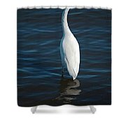 Wading Reflections Shower Curtain