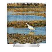 Wading Wood Stork Shower Curtain