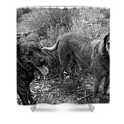 Wagging Tongues Shower Curtain