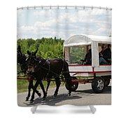 Wagon 6 Shower Curtain