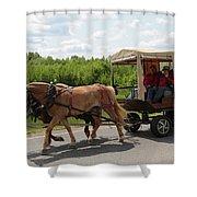 Wagon 7 Shower Curtain