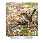 Wagtail 0001 Shower Curtain