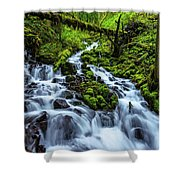 Wahkeena Shower Curtain by Chad Dutson