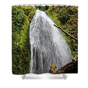 Wahkeena Falls At Footbridge, Oregon Shower Curtain