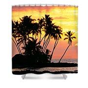 Wailua Bay, View Shower Curtain