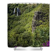 Wailua Falls And Tropical Plants Shower Curtain