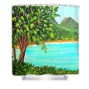 Waimanalo Beach Oahu #385 Shower Curtain