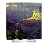 Waimea Canyon Shower Curtain